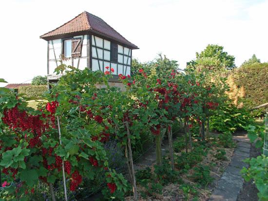 Hopfengartenhaus